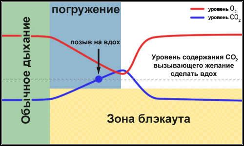 45c741ae72a5c6362697340780a85550.jpg
