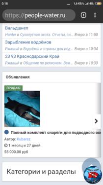 Screenshot_2019-07-20-00-18-59-052_com.android.chrome.png