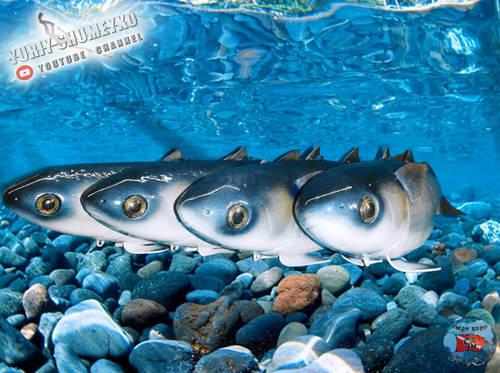 рыб 5.jpg